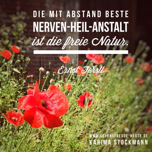 Ernst Ferstl: Die mit Abstand beste Nerven-Heil-Anstalt ist die Natur.