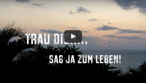 video-thumbnail_trau-dich